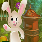 G4K Bunny Resuce Game Walkthrough