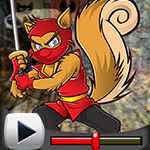 G4K Rugged Ninja Squirrel…