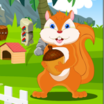 G4K Starving Squirrel Rescue Game