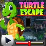 G4K Turtle Escape Game