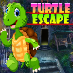 G4K Turtle Escape Game Wa…
