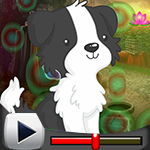G4K Black And White Puppy Escape Game Walkthrough