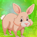 G4K Burly Rabbit Escape G…