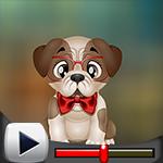 G4K Cute Affectionate Dog…