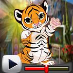 G4K Cute Baby Tiger Escap…