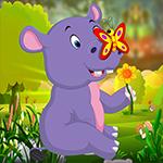 G4K Cute Hippo Calf Escap…