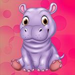 G4K Cute Hippopotamus Esc…