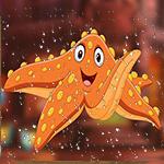 G4K Delightful Orange Sta…