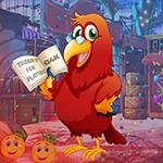 G4K Erudite Red Parrot Es…