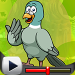 G4K Graceful Pigeon Escap…