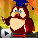 G4K Graduate Owl Escape G…
