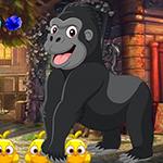 G4K Jubilant Gorilla Esca…