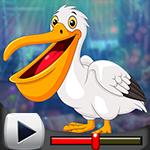 G4K Lovable White Pelican…