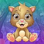G4K Lovely Deference Cat …