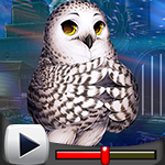 G4K Lovely Owl Escape Gam…