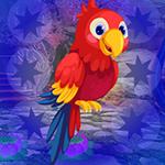 G4K Macaw Parrot Escape G…