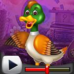 G4K Mushy Cool Duck Escap…