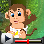 G4K Rescue The Baby Monkey Game Walkthrough
