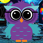 G4K Ruler Owl Escape Game
