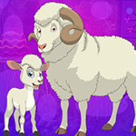 Sheep And Lamb Escape