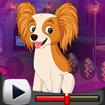 G4K Stunning Puppy Escape Game Walkthrough