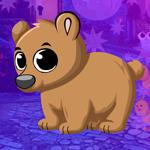 G4K Tranquil Bear Cub Esc…