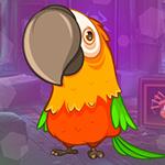 G4K Winsome Parrot Escape…