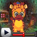 G4k Baby Giraffe Rescue G…