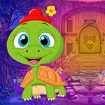 G4k Baby Tortoise Rescue …