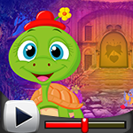 G4k Baby Tortoise Rescue Game Walkthrough