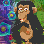 G4k Chimpanzees Escape Ga…