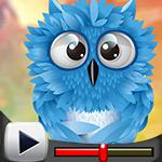 G4K Cute Blue Owl Escape Game Walkthrough