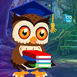G4k Degree Owl Rescue Gam…
