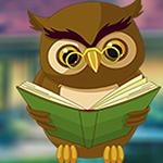 G4K Expound Owl Escape Ga…