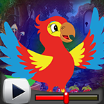G4k London Parrot Escape …