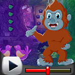 G4k Lunacy Monkey Rescue Game Walkthrough