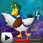 G4k Mallard Duck Rescue Game Walkthrough