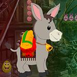 G4k Pygmy Donkey Rescue G…